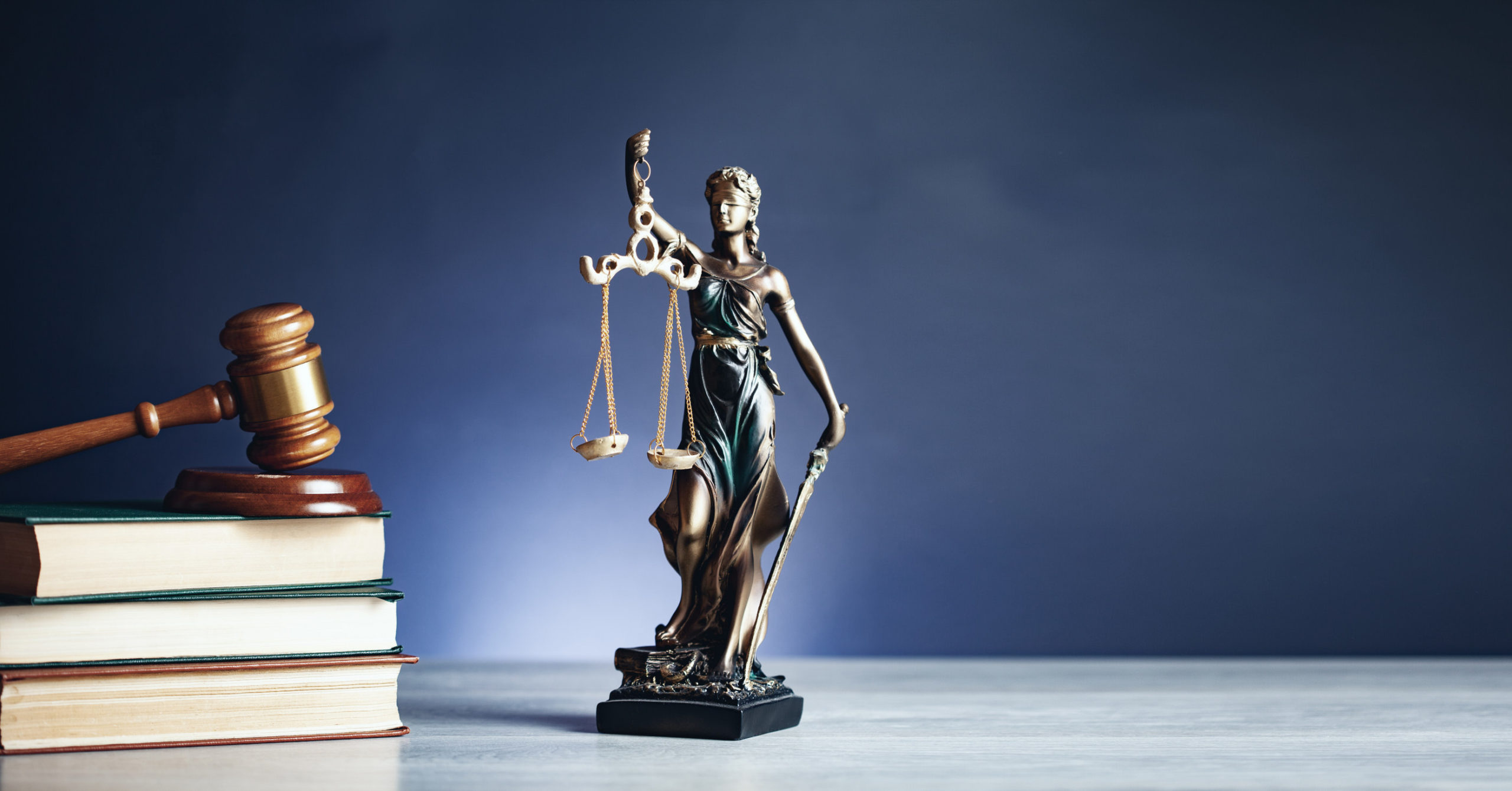 https://www.freepik.com/premium-photo/lady-justice-with-hammer-book_9102242.htm#page=1&query=law&position=20